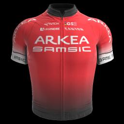 https://radsim05.de/images/jerseys/2020/256/ark.png