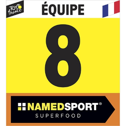 [img]https://radsim05.de/images/races/2020/07/tdf/icons/equipes.png[/img]